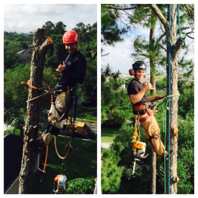 Our St Augustine Tree Service Crew